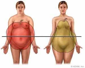 Rapport-taille-hanche-ou-RTH-pomme-poire