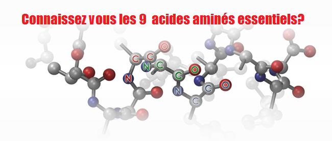 Connaissez vous les 9  acides aminés essentiels?