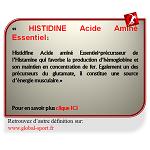 Histidine Acide Aminé source d'énergie musculaire