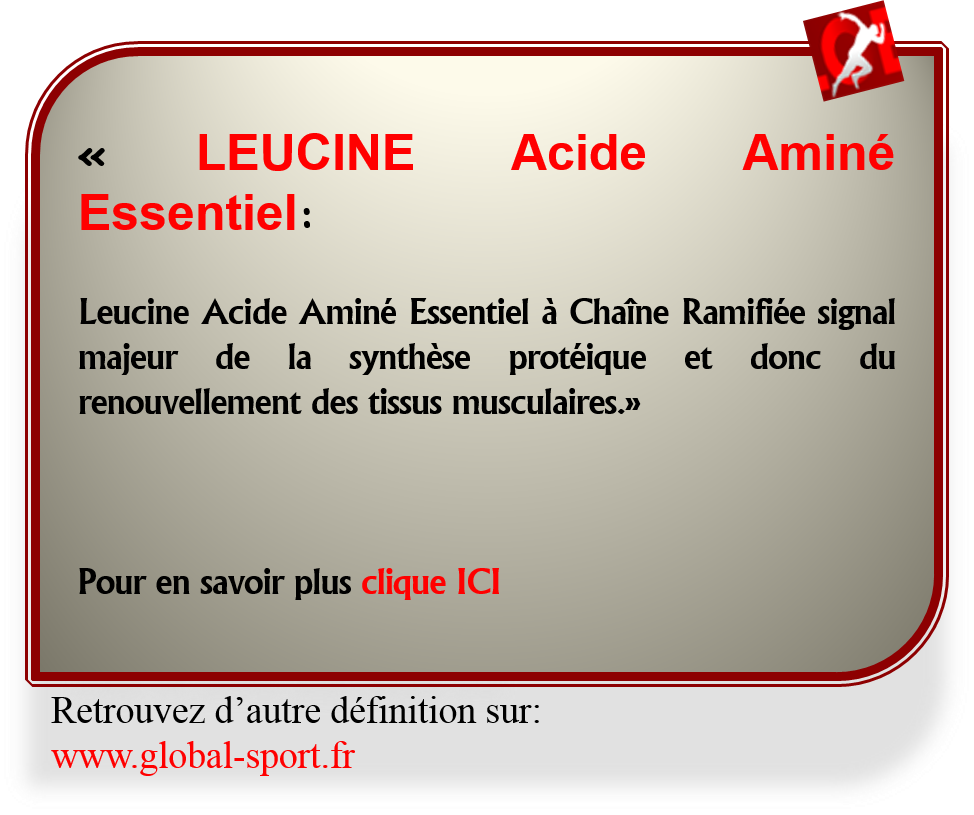 Leucine Acide Aminé Essentiel à Chaîne Ramifiée