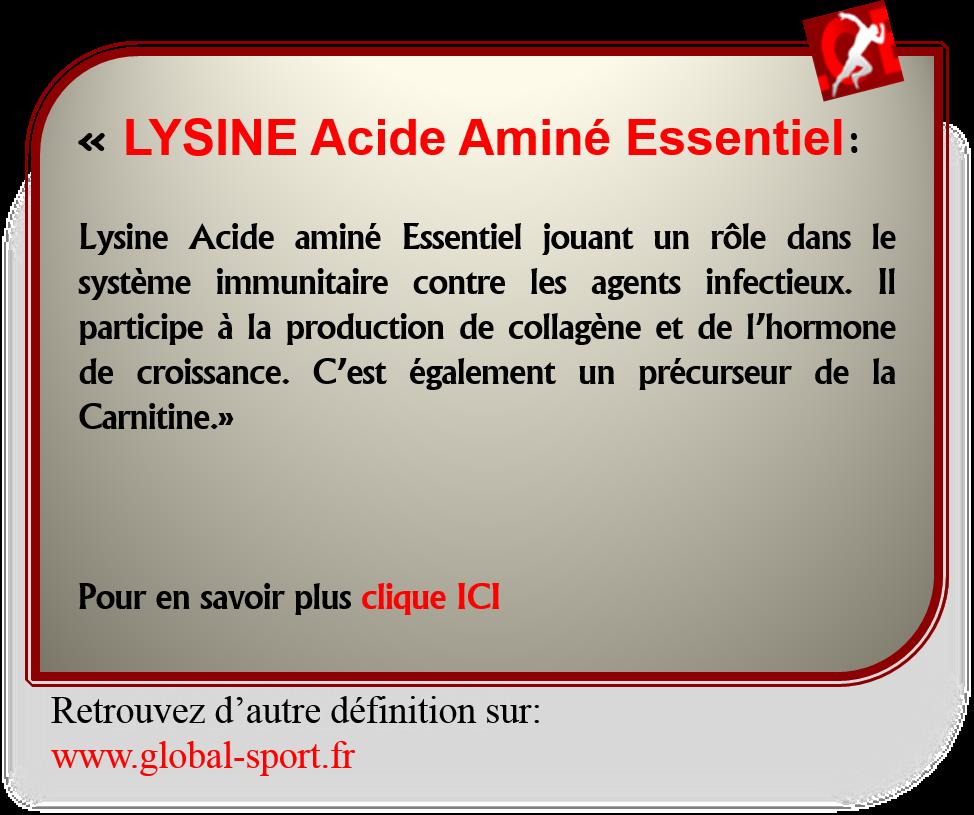 Lysine Acide aminé précurseur de la carnitine