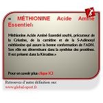 Méthionine Acide Aminé Essentiel précurseur de la Créatine