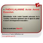Phénylalanine Acide Aminé favorise le développement musculaire