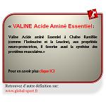 Valine Acide Aminé Essentiel à Chaîne Ramifiée favorise la prise de masse musculaire