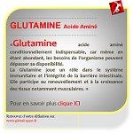 Glutamine acide aminé antioxydant