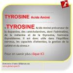 tyrosine acide aminé précurseur des catécholamines